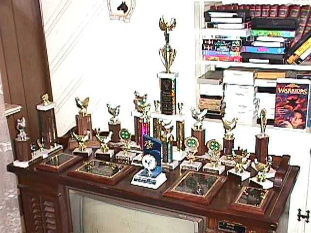 Some of Christopher's Trophies